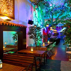Jardinet Aribau 3